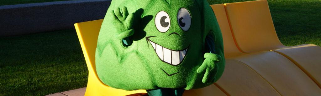 Artie Artichoke - Custom Mascot Costume