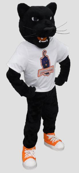 School mascot panther