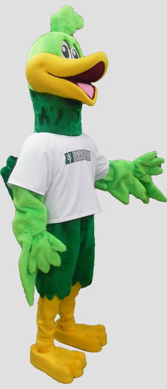 school mascot roadrunner