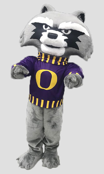 School mascot raccoon wearing shirt