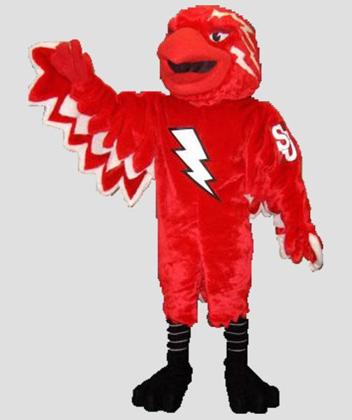 school mascot thunderbird