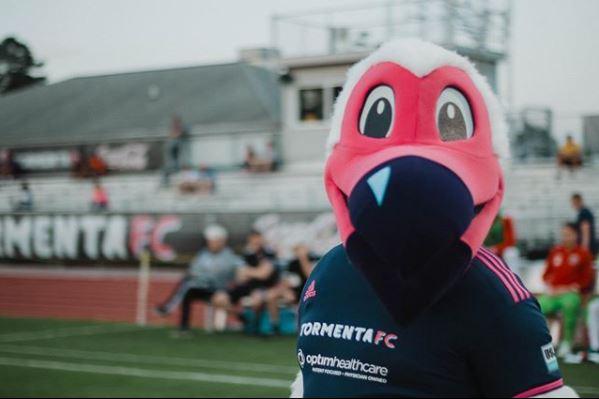 Tormenta FC Bolt the Ibis Mascot