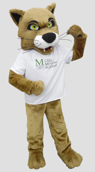 School mascot wildcat
