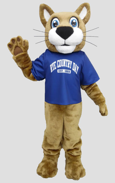 School mascot wildcat wearing shirt