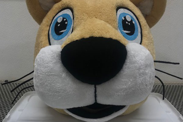 Cheap Mascot Costume Head