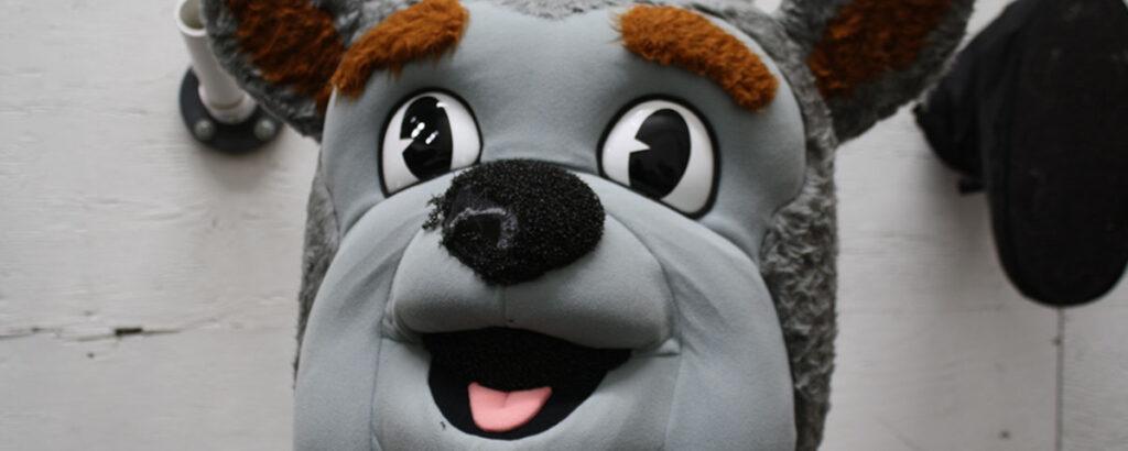 Mascot Head Cleaning