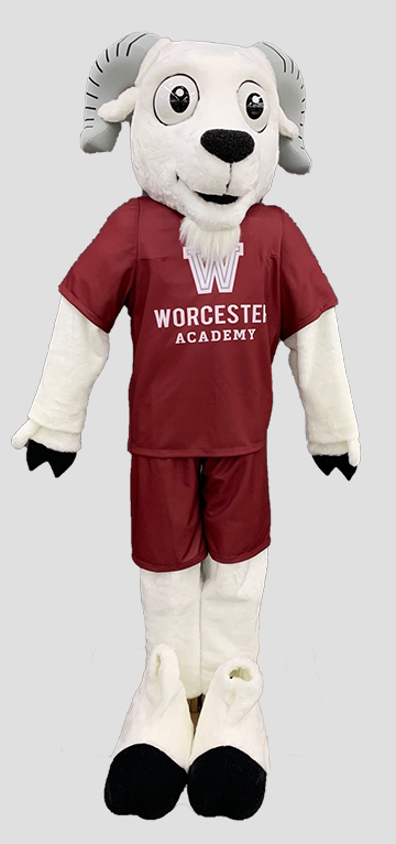 oskee the ram worcester academy mascot animal