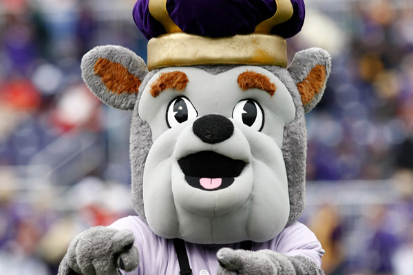 Grey bulldog sports mascot with crown pointing at crowded stadium