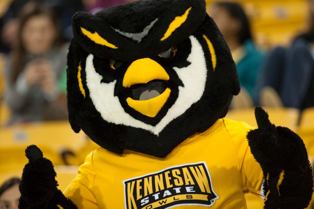 picture showing mascot vision